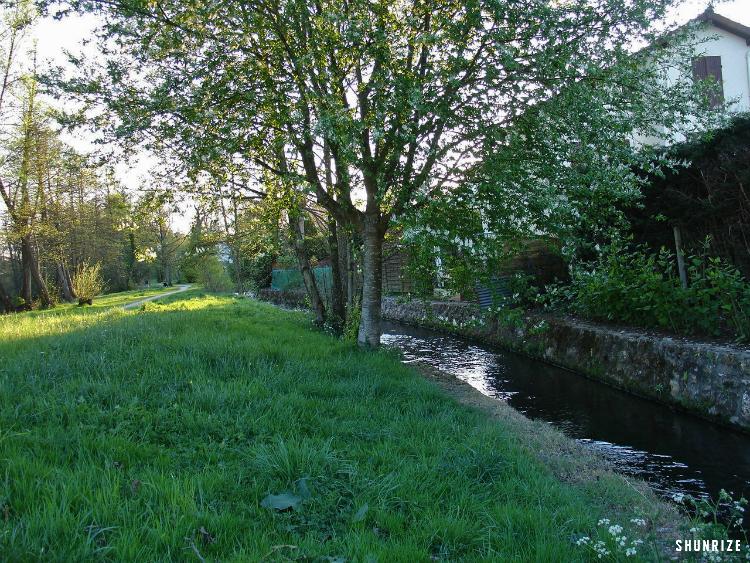 Bois des Rochers à Saint-Chéron